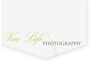 VueLife Photography
